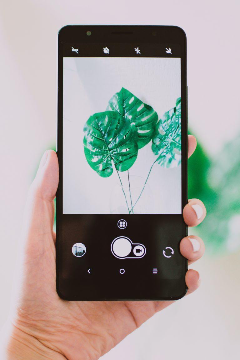 Top 5 Best Camera Phones of 2021